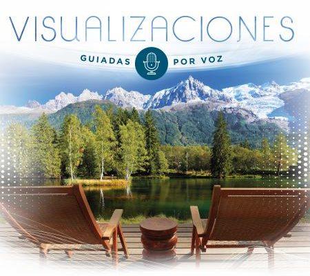 VISUALIZACIONES GUIADAS POR VOZ – MFM023